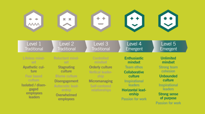 5 levels of emergent leadership